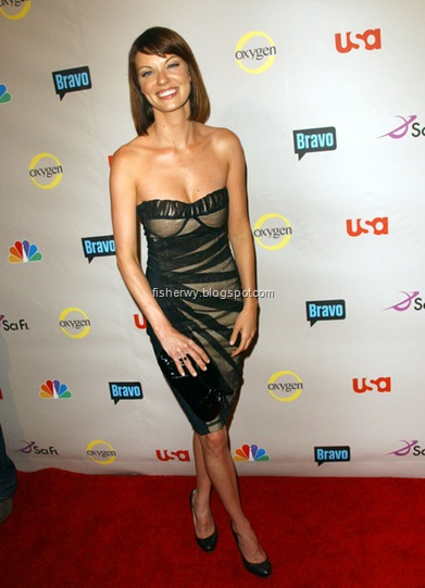 Picture of Nicholle Hiltz with a bustier sheath dress at 2008 NBC Summer TCA party