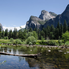 Yosemite by VJ Thomas - Landscapes Mountains & Hills ( national park, mountains, reflections, lake, vacation 2014 )