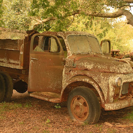 Old truck by Ron Olivier - Novices Only Objects & Still Life (  )
