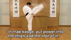 Lifelong Kyokushin Karate 10のおすすめ画像2