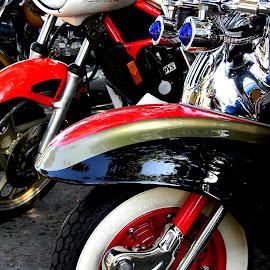 Bikes at the bike run this morning by Liz Hahn - Transportation Motorcycles