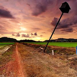by Derek Ooi - Landscapes Prairies, Meadows & Fields