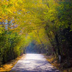 by Arkadeb Kar - Novices Only Landscapes