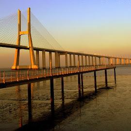 Vasco da Gama Bridge by Isa Pat - Buildings & Architecture Bridges & Suspended Structures