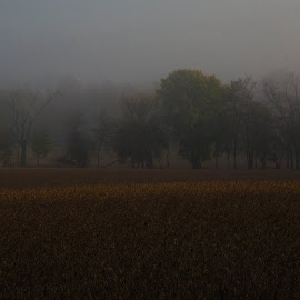 Foggy fall morning by Valerie Dyer - Landscapes Weather