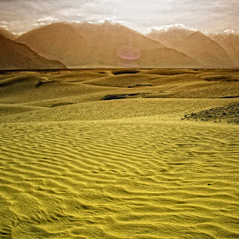 Ladakh Cold Deserts by Amit Kumar - Nature Up Close Sand ( nubra valley, india, ladakh, jammu & kashmir )