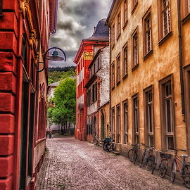 Street in Heidelberg by Ole Steffensen - City,  Street & Park  Street Scenes ( bicycles, narrow street, cobblestones, heidelberg, street, germany,  )