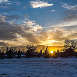Cold Burst by Coleen Sullivan - City,  Street & Park  City Parks ( skyline, winter, park )