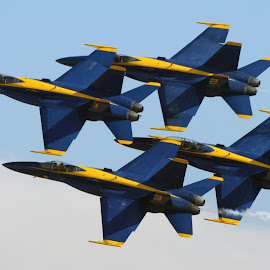 Blue Angels over San Diego by Daniel Dressel - Transportation Airplanes ( miramar air show, military aircraft, f18 hornet, superhornet, f18, blue angels )