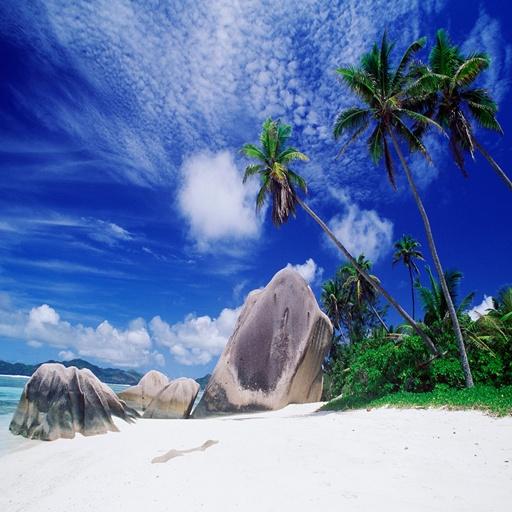 3D海灘 66 休閒 App LOGO-硬是要APP