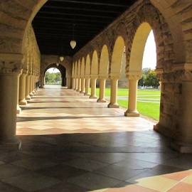 STANFORD UNIVERSITY SANFRANCISCO by Shekhar Bopardikar - Buildings & Architecture Architectural Detail