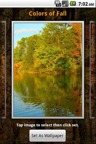 Colors Of Fall Wallpaper