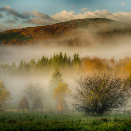 Countryside in the morning by Ovidiu Marinoiu - Landscapes Mountains & Hills ( clouds, hills, sky, autumn, fog, trees )