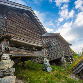 Houses with grass roof on an old Norwegian farm by Lili Rozet - Buildings & Architecture Homes ( cabin, old, detail, colorful, plank, house, landscape, build, norway, farm, bold, ancient, mystical, barn, norge, dream, folk, grass, colors, green, postcard, folkemuseum, museum, board, log, rural, print, field, northern, roof, norwegian, blue, outdoor, artistic,  )