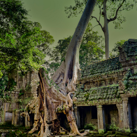 Sacred Ancient Temple by Ferdinand Ludo - Buildings & Architecture Places of Worship ( temple, preserve, cambodia )