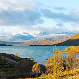 First snow by Janne Monsen - Landscapes Mountains & Hills ( valdresflya, bessheim, sjodalen, oppland, norway )