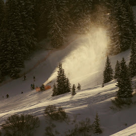 auf Piste  by Michal Valenta - Sports & Fitness Snow Sports