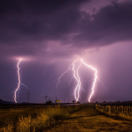Oklahoma Lightning  by Jason Holden - Landscapes Weather ( lightning, oklahoma, tornado alley, storm, spring,  )