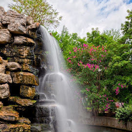 Zoo Waterfall by Nicolas Raymond - City,  Street & Park  City Parks ( dreamy, stone, rock, chutes, travel, vibrant, flow, yellow, colour, washington, colourful, sky, fluid, zoo, foliage, movement, pink, motion, surreal, flowers, move, dc, orange, colors, tourism, united states, somadjinn, colours, touristic, silky, fountain, scene, trees, stream, smooth, america, colorful, waterscape, rocky, vivid, waterfall, landscape, usa, nicolas raymond, fresh, american, chute, cloudy, long exposure, water, streaming, clouds, park, flowing, flora, green, cascades, scenic, organic, cyan, red, color, blue, cascade, vibrance, fall, falls, washington dc, brown, cascading, scenery,  )