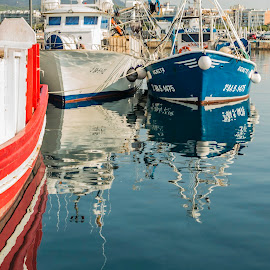 Resting between catches by Liam Coburn Dunne - Transportation Boats ( nikon 24-70, red, blue, fishing boats, nikon d800, white, reflections, palamos,  )
