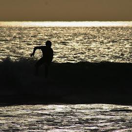 Zen by Alvin Simpson - Sports & Fitness Surfing (  )