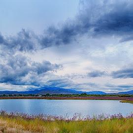 Wildflower pond by Taylor Sanderson - Landscapes Prairies, Meadows & Fields ( clouds, hills, meadow, flowers, pond )