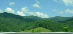 carolina_hills