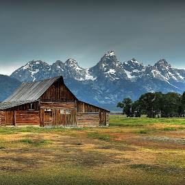Moulton Barn Morning by Ryan Smith - Buildings & Architecture Other Exteriors ( mountains, barn, mormon row, landscape, tetons, moulton barn, grand teton national park )