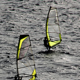 Windsurfing by Benny Berget - Sports & Fitness Surfing