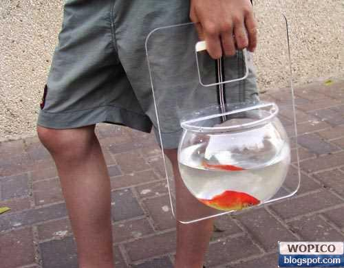 Carry A Fish