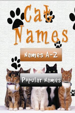 Cat Kitten Names