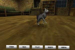 Screenshot of Pet Cat - Virtual Pet