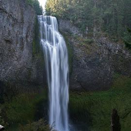 Salt Creek Falls by Waynette  Townsend - Nature Up Close Water ( oregon, creek, falls, salt creek, waterfall, moss, forest, volcanic, glacial )