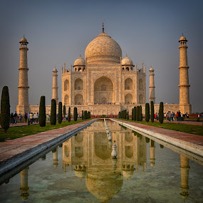 The Taj by Phil Robson - Buildings & Architecture Public & Historical ( reflection, taj mahal, wonder, monument, india,  )