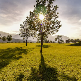 Right here rignt now by Pepe Maldonado - Landscapes Travel ( clouds, mountains, sky, peaceful, grass, peace, trees, sunshine, shadows, branches, sun )