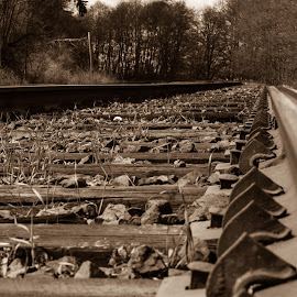 Clamped Stakes by E.g. Orren - Transportation Railway Tracks ( b&w, photo by ego, transportation, railway tracks )