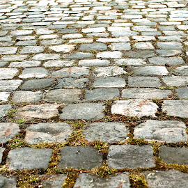 Cobblestones by Mo Harmon - Abstract Patterns ( old, building, cobblestones, worn, path, stone, historical, stones,  )