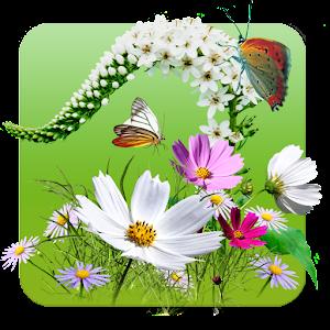 Download como cuidar plantas jardines apk on pc download for Como cuidar las plantas ornamentales