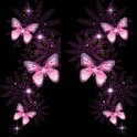 pink butterfly 2 icon