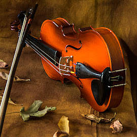 Life on the Edge  by Rakesh Syal - Artistic Objects Musical Instruments