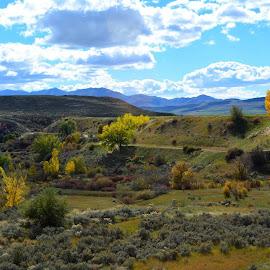 Near Newton Utah today. by John Dodson - Landscapes Prairies, Meadows & Fields