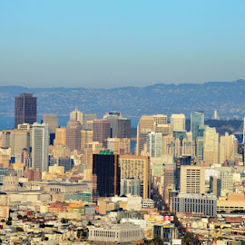 Downtown San Francisco as seen from Twin PeaksEXIF: f/11 | 1/500s | ISO-220 | 157mm by Aalok Pandit - City,  Street & Park  Skylines