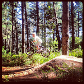 Forest Flyer by Elaine Alberts - Instagram & Mobile iPhone ( #bicycle, #ramping, #forest, #mtnbike )