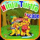 Ninja Turtle Escape