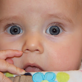 Through Baby Blues by Jody Frankel - Babies & Children Babies ( facial expression, baby, portrait, eyes )