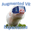 Augmented VR Experience