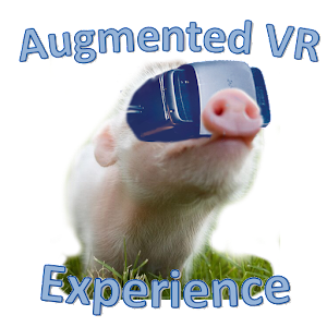 Cover art Augmented VR Experience