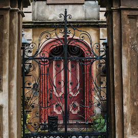 Harped Red Door by Jonathan Jackson - Buildings & Architecture Homes ( charleston, door, iron, historic, gate )
