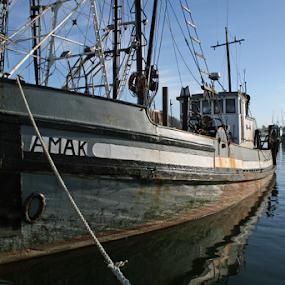 F/V Amak by Bill Waterman - Transportation Boats ( water, bayfront, boats, ocean, fishing, docks,  )