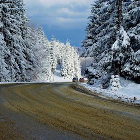 Drumul spre Cavnic...© foto Costel Ciobanu by Costel Ciobanu - Landscapes Mountains & Hills